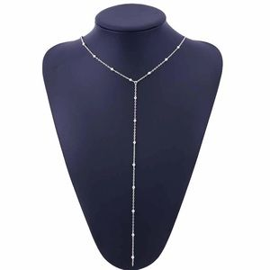 Jewelry - NWT Long Beaded Necklace in Silver